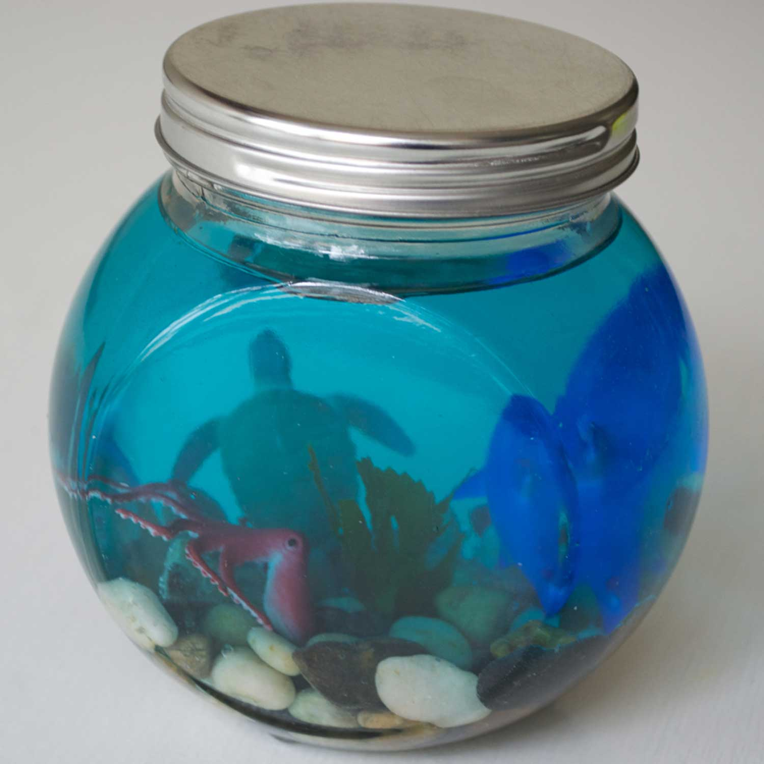 Dollartree Com Bulk Glass Jar Ocean Terrarium