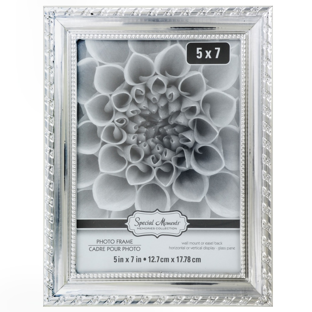 85c12853fe50 Silver Photo - Dollar Tree