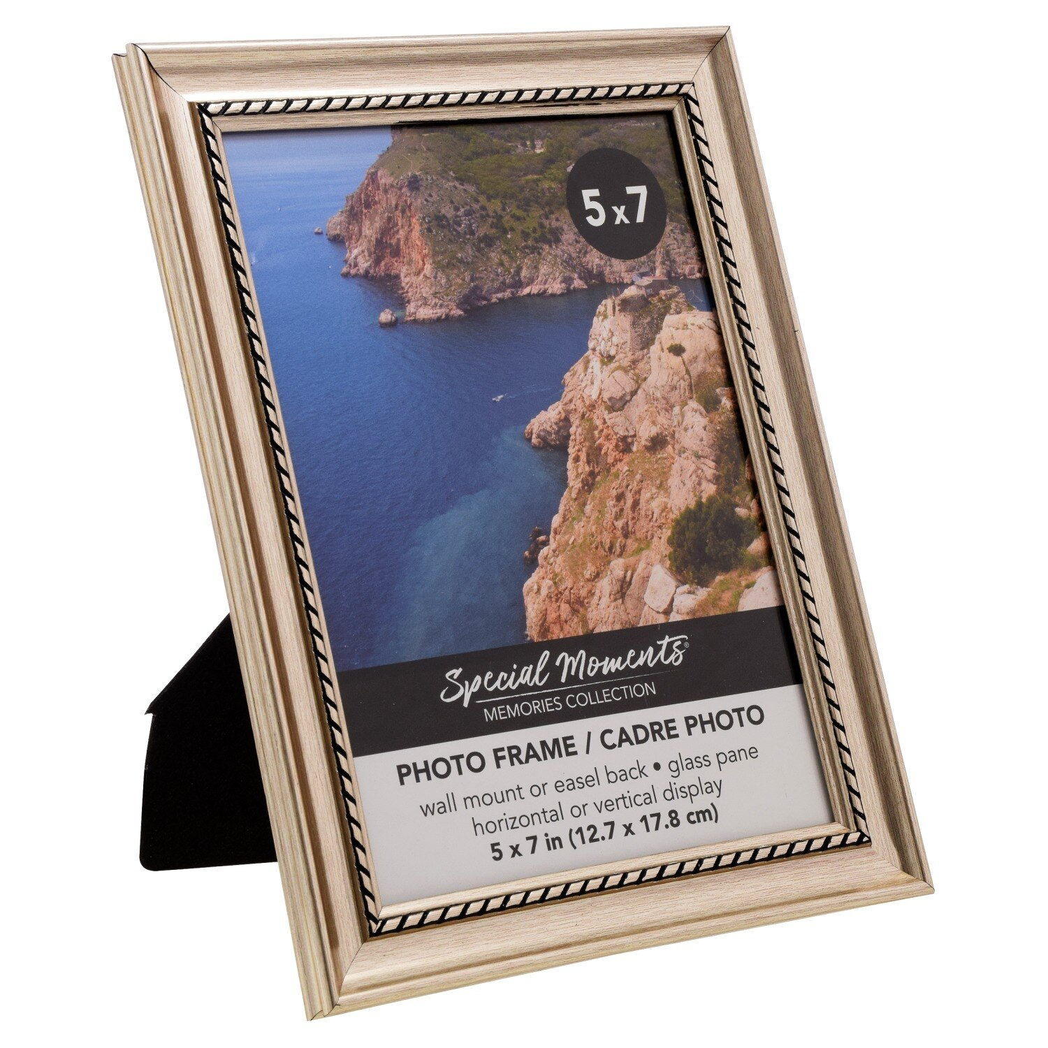 a78361fec804 Special Moments Champagne Photo Frames