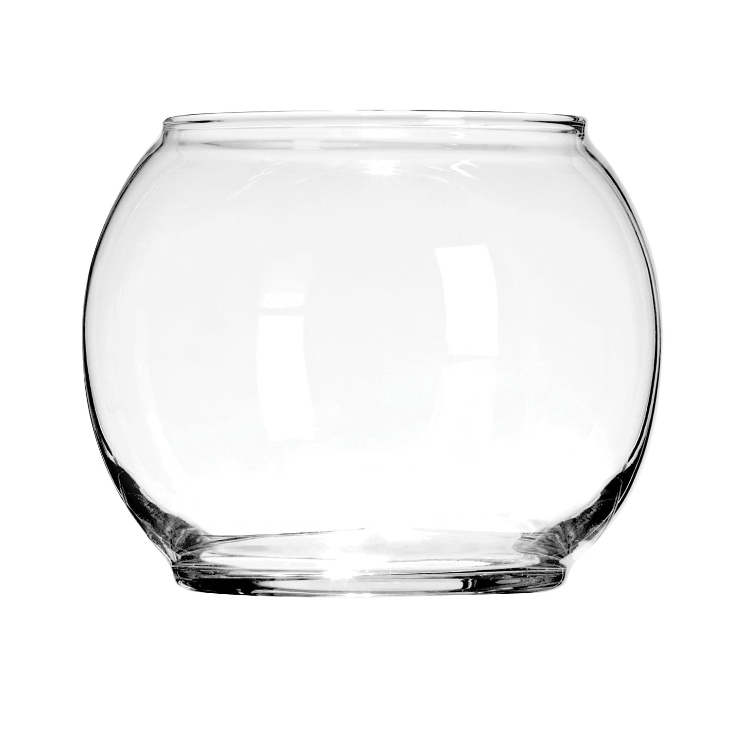 Glass Bowl Dollar Tree Inc