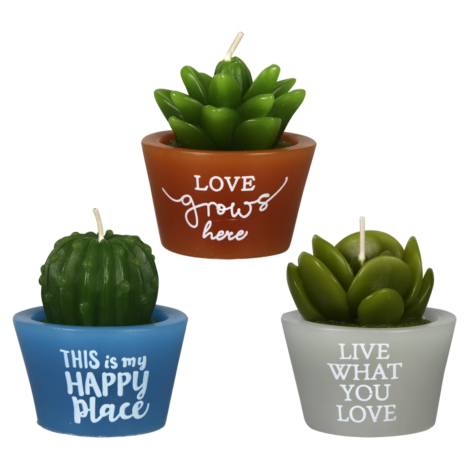 Succulent Shaped Candles