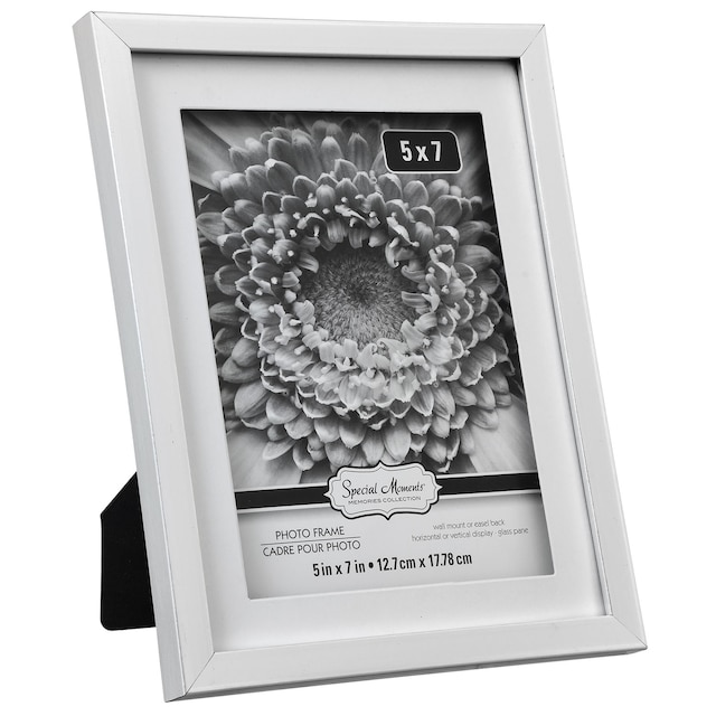Dollartreecom Bulk Bulk Special Moments Matted Silver Plastic