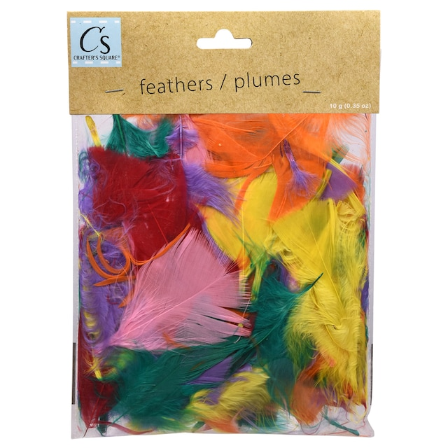 Crafter S Square Craft Feathers 10 G Packs