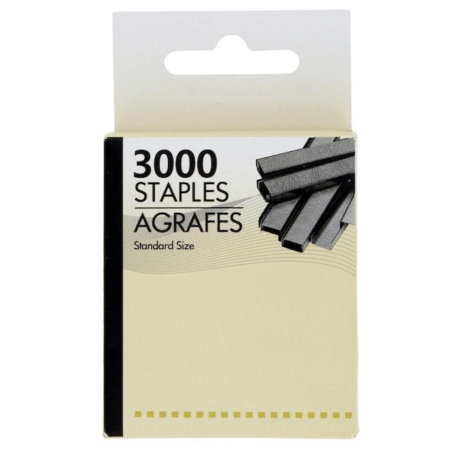 Dollartreecom Standard Sized Staples 3000 Ct Packs