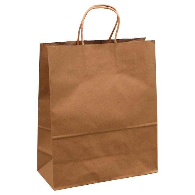 Voila Large Natural Kraft Paper Gift Bags 10x12 In
