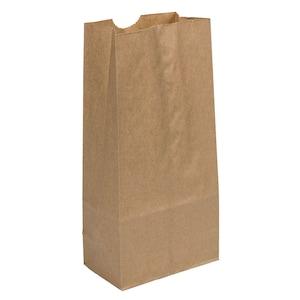 5f3d76c6ebae Brown Paper Lunch Bags, 40-ct. Packs