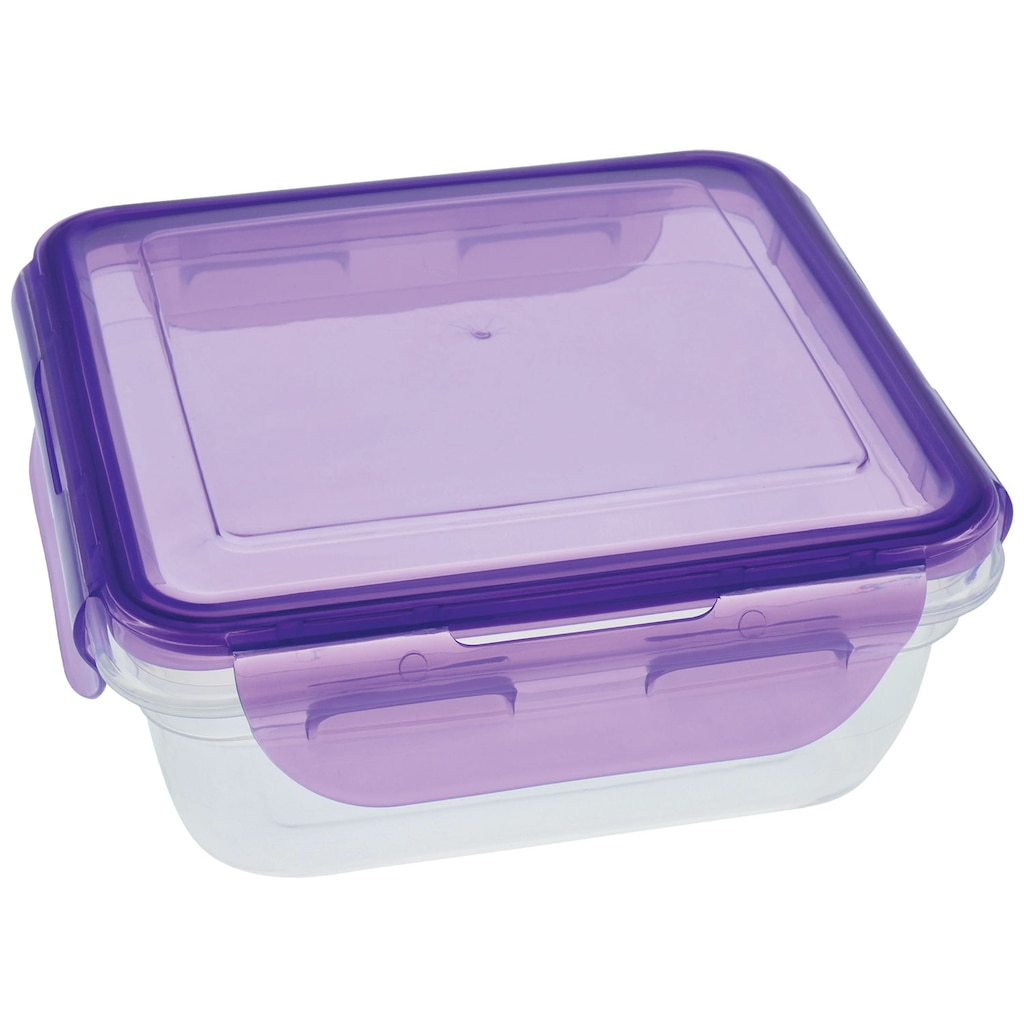 Microwave Containers Dollar Tree Inc Medium Summer Fresh Tupperware Sure Square Storage With Clip Lock Lids 255 Oz