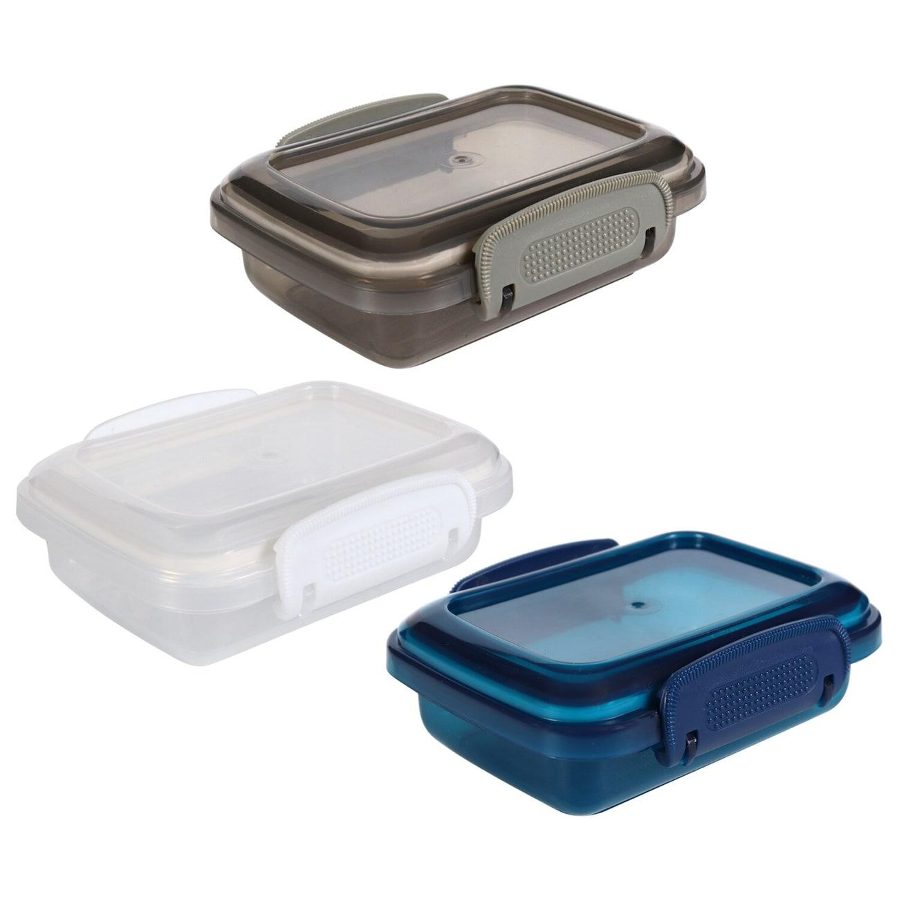 Translucent Plastic Storage Boxes with Clip-Lock Lids, 2-ct. Packs