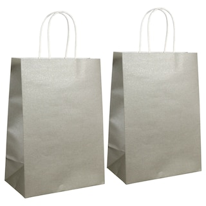 dollartree com silver kraft paper gift bags 2 ct packs