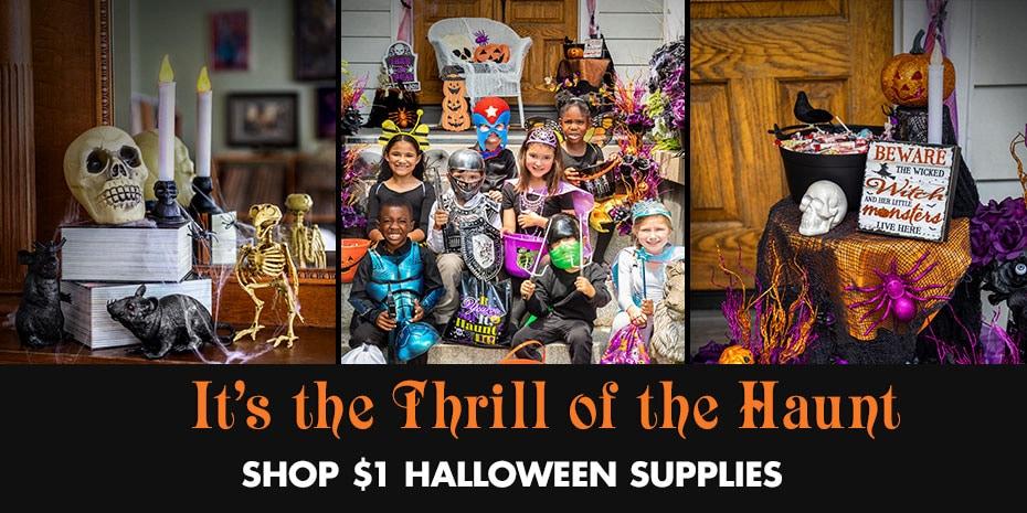 a689d9a540e DollarTree.com | Bulk Halloween Shop