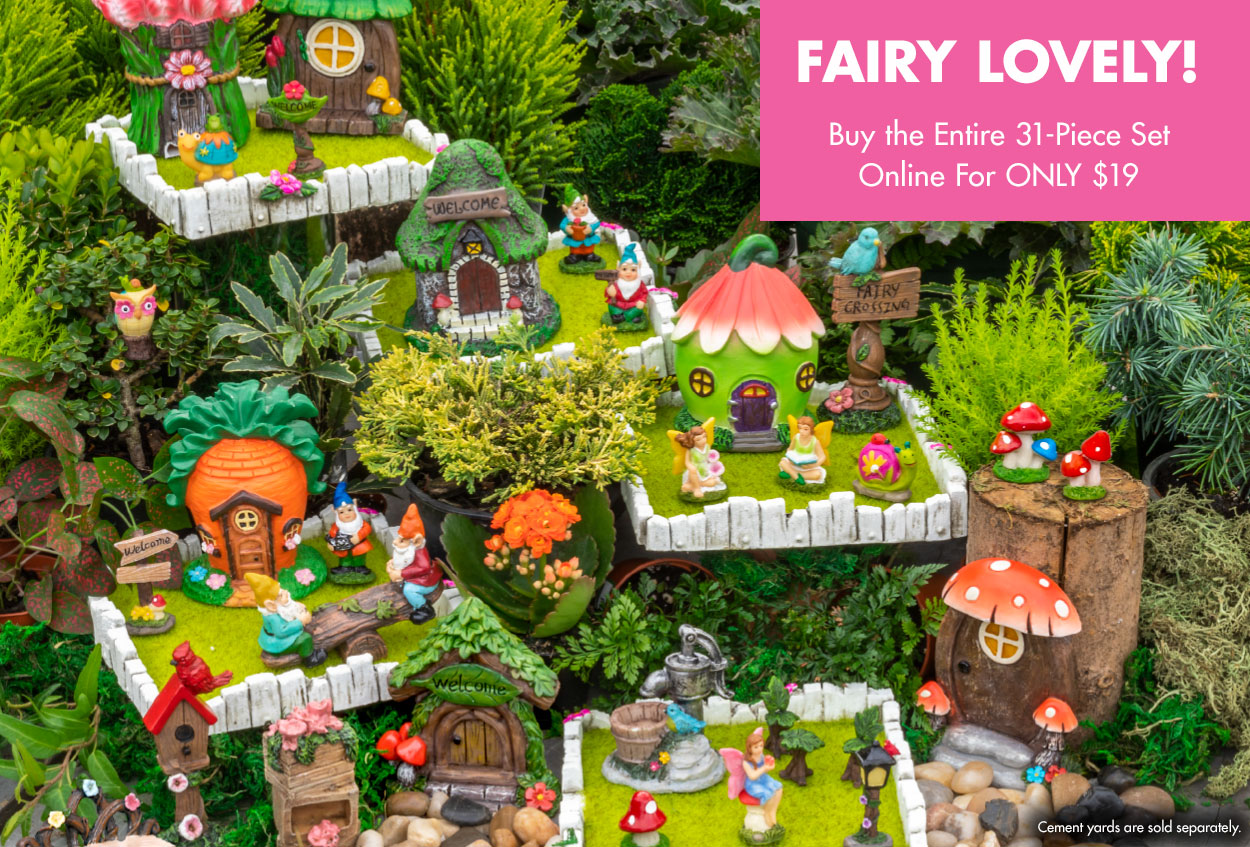 Fairy Gardens Dollartree Com