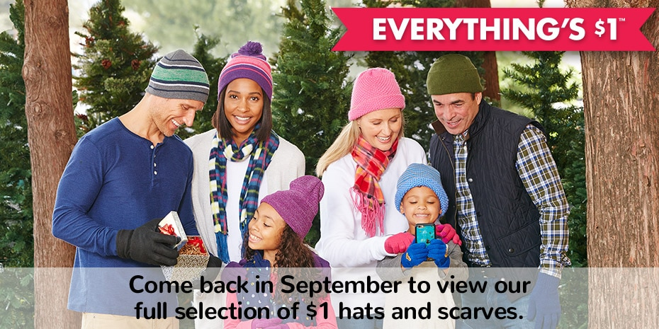 18a49fe48 DollarTree.com | Bulk Winter Hats & Scarves