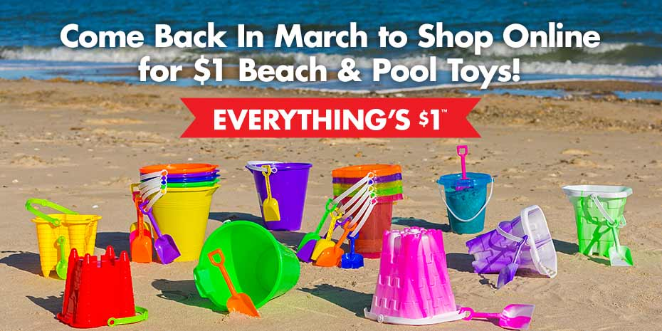 DollarTree.com | Juguetes para la playa o piscina