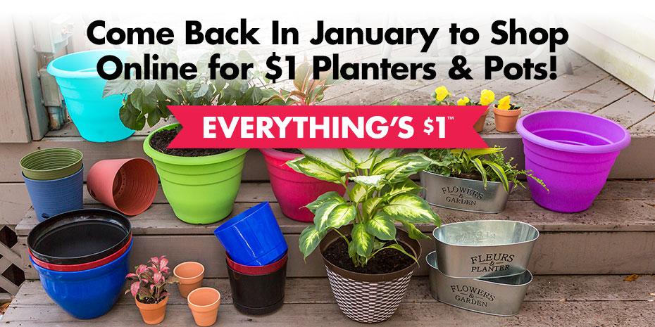 DollarTree.com   Gardening Planters & Pots on pink pots, pumpkin pots, flowers pots, pot pots, plant pots, window pots, white pots,