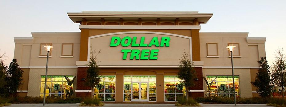 DollarTree com   Dollar Tree, Inc  : History