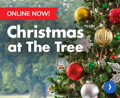 dollartreecom christmas - Rural King Christmas Decorations